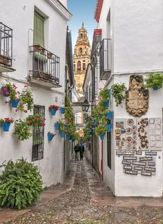 Located in the Andalusian city of Cordoba, Calleja de las Flores is a narrow street that runs right into a plaza. With its many flowers and white-washed walls, the charming Spanish street is very typical of the region.
