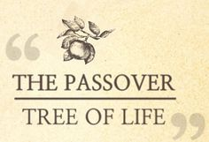 The tree of good and evil and tree of life-WMSCOG We looked in the Bible about the tree of life and the tree of good and evil last time. God said to reveal the hidden secret as comparison from in the beginning(Matthew 13:34~35). Then Let's take a look about words written in the Bible concerning …