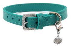 Tiffany blue dog collar