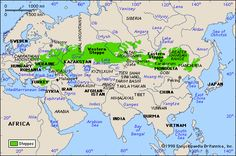 40 Awe-Inspiring Facts About Genghis Khan and the Mongol Empire Eurasian Steppe, Semitic Languages, Dna Genealogy, Genghis Khan, Asia Map, Religion, Biomes, White People, Historical Maps