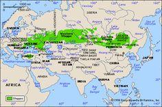 Ausbreitung der asiatischen Steppe