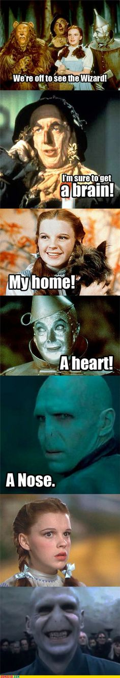 Wizard of Oz Voldemort Harry potter Ridiculous Harry Potter, Harry Potter Puns, Kubo And The Two Strings, Lol, Cultura Pop, Draco Malfoy, I Laughed, The Best, Funny Pictures