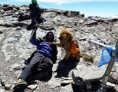 Ignacio y su perro Oro hicieron cumbre en el Aconcagua