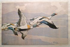 ✨ Allen William Seaby, British (1867-1953) - Shelducks in flight, probably 1920s. Colour Woodcut, signed in pencil,