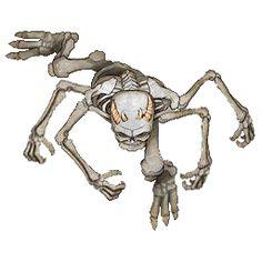 squelette token roll20 sans ombre