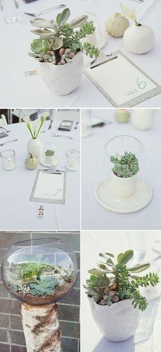 succulent centerpieces (Brooklyn Bride)