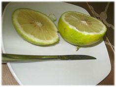 Bergamota - Citrus bergamia - Acredita-se que Cristóvão Colombo trouxe a planta das Ilhas Canárias para a Itália e Espanha. Hoje cresce largamente na Calábria na Itália e uma pequena produção pode ser encontrada ao longo da Costa do Marfim.