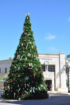 Christmas tree in Palm Beach, Florida