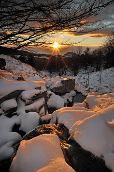 winter sunset on the snow
