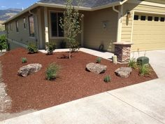 Simple front yard... bark, boulders and plants