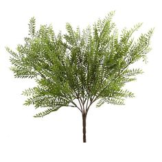 Ashland® Fern Collection Fern Bush10129075.jpg