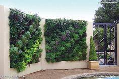 11 Best Vertical Garden Walls Images In 2013 Garden