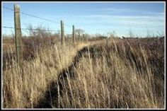 Trail of Death   Tribal Sovereignty