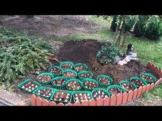 Garden Paths, Lawn And Garden, Home And Garden, Farm Gardens, Small Gardens, Landscape Design, Garden Design, Front Yard Flowers, Indoor Water Garden