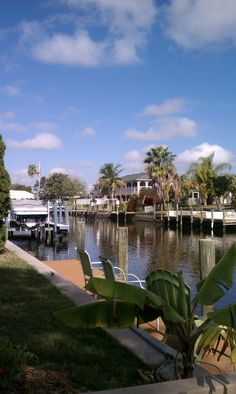 Cape Coral, FL - I used to live here. Yep, there were TONS of canals!