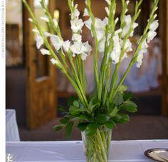 Gladiolus + variegated israelis centerpieces