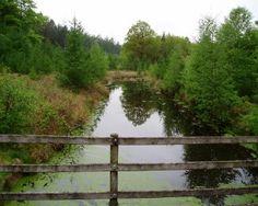 Fietsroute Diever en omgeving