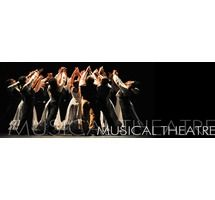 Professional Musical Theatre - Level 4 class for ages 12 & up will begin on 9/10/13 and last 15 weeks.  More info can be found in this pin.