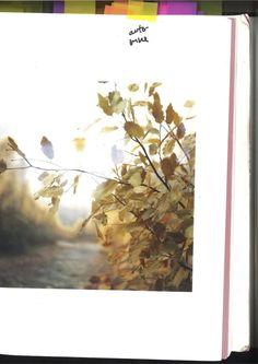 En images : les inspirations visuelles de Xavier Dolan pour Mommy Xavier Dolan, Doctor Who, Light Cinema, Film Serie, On Set, Movie Stars, Movies, Painting, Monsters