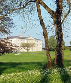 A stunning view of Farnham House at the Radisson Blue Farnham Estate Hotel, Cavan which dates back to the century. Ireland Hotels, Stunning View, Beautiful, Hotel Spa, 16th Century, Dates, Cool Pictures, Castle