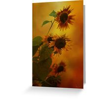 #Greeting Card  25% off hoodies and sweatshirts. 20% off everything else. Use HAVEFUN  #sunflowers, #sunset,#art,#decor,#clothing