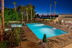 Days Inn And Suites Scottsdale North - Hotel Pet Policy Pet Dogs, Dog Cat, Pets, Pet Friendly Hotels, Motel, Bed And Breakfast, Lodges, Arizona, United States