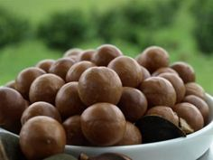 Bellbowra Certified Organic macadamias, from the NSW Mid North Coast. Nuts In Shell, Sustainable Companies, Farmers Market, Pecan, Artisan, Organic, North Coast, Free Shipping, Board
