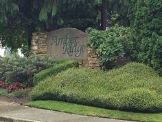Homes in Amber Ridge Bothell WA