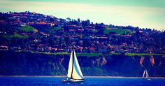 #californiacoast #californialife #southerncalifornia #ilovela #losangeles #southbay #redondobeach #palosverdes #aboatinglife #sailboats #sunset_madness #brucebeanphotography #photooftheday #whalewatching #instagood #followback
