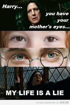 I love Harry Potter dearly. This is the one thing that made me so pissed. HARRY AND LILY HAVE GREEN EYES IN THE BOOK!!!!! UGH!!!!!