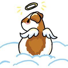 Lil Angel Guinea Pig by ~evilekeeper on deviantART