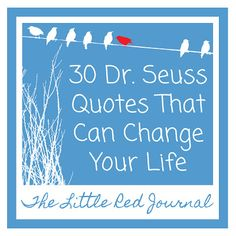 The Little Red Journal: 30 Dr. Seuss Quotes that Can Change Your Life