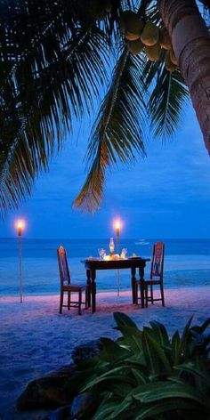 A quiet beach, palm trees flowing in the warm breeze, candlelight, waves splashing up on the beach, dinner for two then you are in Paradise.