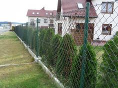 the fence of mesh netting with their hands