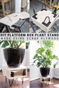Learn how to make a DIY plant stand using scrap wood and hairpin legs. This is the perfect way to elevate a plant and give it the attention it deserves! Diy Planters, Hanging Planters, Sanding Wood, Wood Plant Stand, Diy Home Decor Projects, Wood Projects, Hairpin Legs, Beginner Woodworking Projects, How To Make Diy