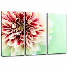 Large Pink Cream Green Floral Canvas set