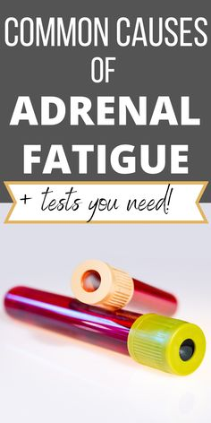 What Is Adrenal Fatigue, Causes Of Fatigue, Adrenal Fatigue Symptoms, Adrenal Glands, Chronic Fatigue, Adrenal Health, Women's Health, Health And Nutrition, Adrenal Cocktail
