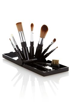 Travel Brush Set...perfect for keeping your brushes nice.when you travel! Genious!