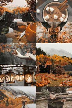 Mood Board l Branding Inspiration l Website Branding & Design | Autumn and Halloween