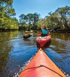 Sarasota: Five Local Aquatic Adventures for Kayakers, Canoers and Paddleboarders Summer Aesthetic, Travel Aesthetic, Summer Feeling, Summer Vibes, Granola Girl, Summer Goals, Summer Bucket Lists, To Infinity And Beyond, Camping Life