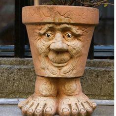 funny planter danita delimont netherlands
