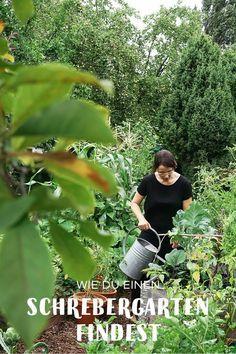 Wie Finde Ich Eigentlich Einen Schrebergarten In Berlin Gartenblog Hauptstadtgarten Schrebergarten Garten Nutzgarten Anlegen