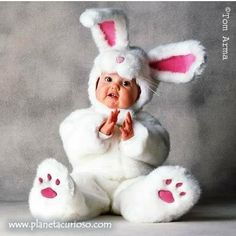 The world's cutest Easter Bunny!