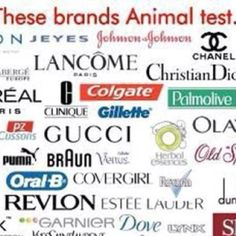 animal testing beneficial