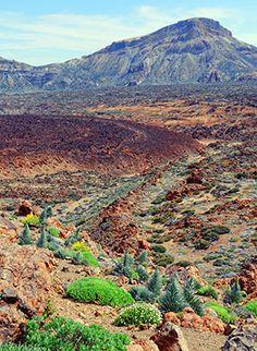 del teide national park with its volcanic landscape. Tenerife, Canary Islands, Mount Rainier, Mountains, Landscape, Hdr, Beach, Places, Travel