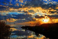 Владивосток. Закат над Амурским заливом