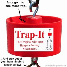 keep ans out of hummingbird feeder
