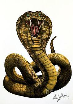 Snake Drawing, Snake Art, Tatuaje The Rock, King Cobra Snake, King Cobra Tattoo, Cobra Art, Airplane Drawing, Dragon Age Games, Queen Tattoo