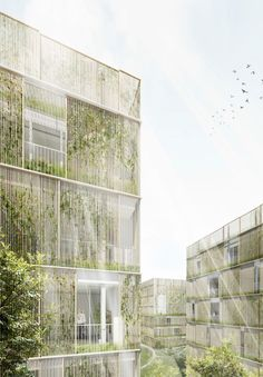 Architecture Durable, Architecture Résidentielle, Architecture Visualization, Architecture Portfolio, Sustainable Architecture, Archi Design, Facade Design, Exterior Design, Green Facade