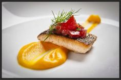 Sophisticated Savories: Smokey curry carrot/ginger puree with seared salmon and pickled red bell pepper/tomato garnish Baby Food Recipes, Gourmet Recipes, Cooking Recipes, Shellfish Recipes, Seafood Recipes, Salmon Recipes, Nutrients In Vegetables, Gourmet Food Plating, Food Plating Techniques